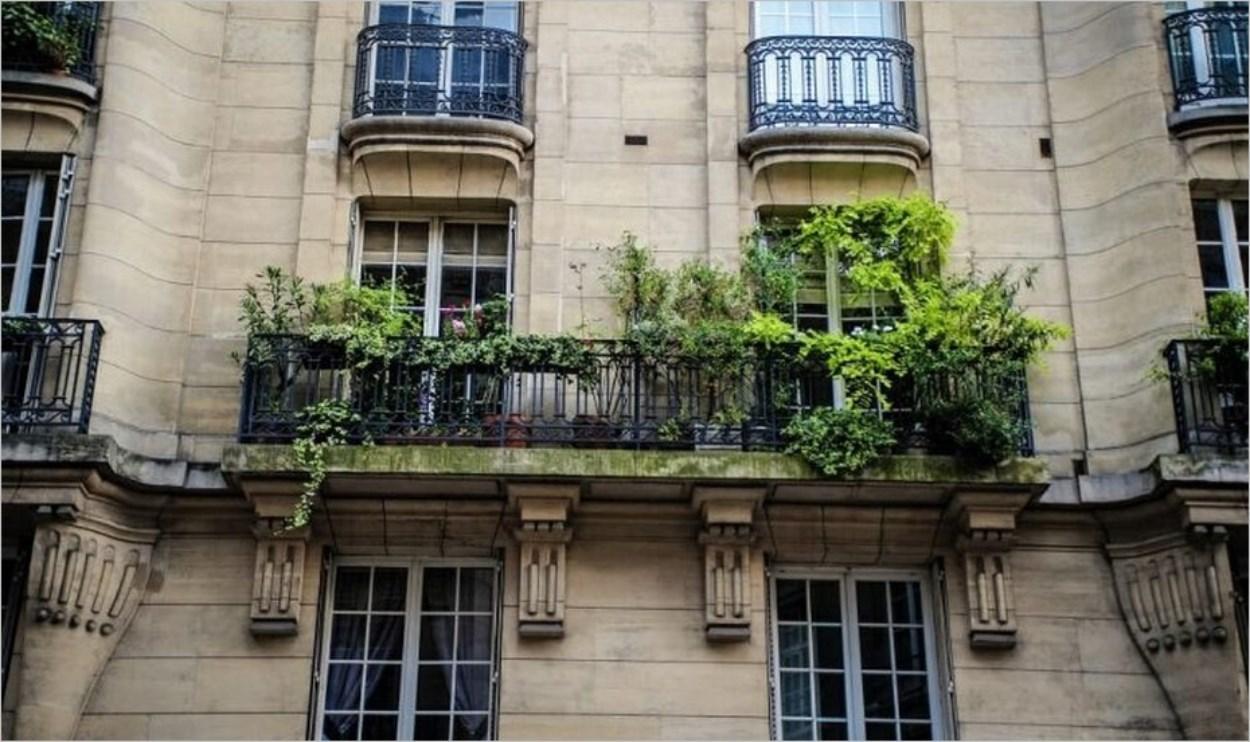 Balcon parisien végétalisé